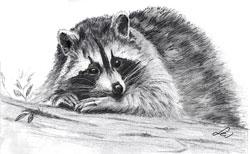 Как нарисовать животное