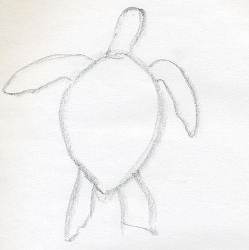 Нарисовать черепаху поэтапно - 3
