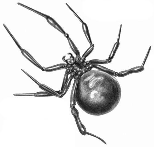 Человек-паук. Tweet.