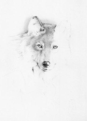 Портрет горчакова как нарисовать
